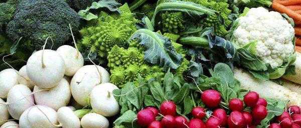 Eat Local: Truckee's Favorite Farmer's Markets