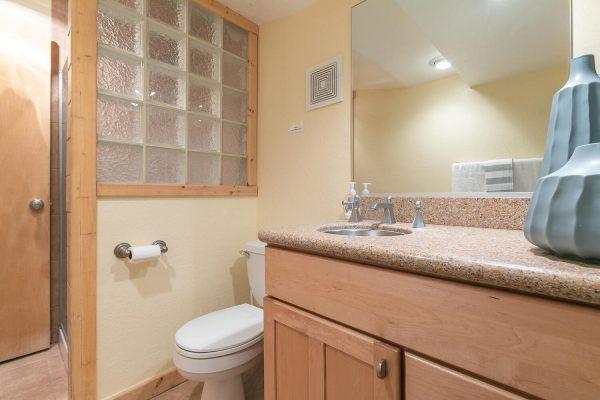 4066 Coyote Fork Truckee CA-large-028-017-Bathroom Two-1500x1000-72dpi