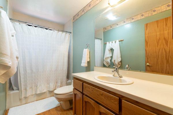 12276 Greenwood Dr Truckee CA-large-029-016-Bathroom One-1500x1000-72dpi