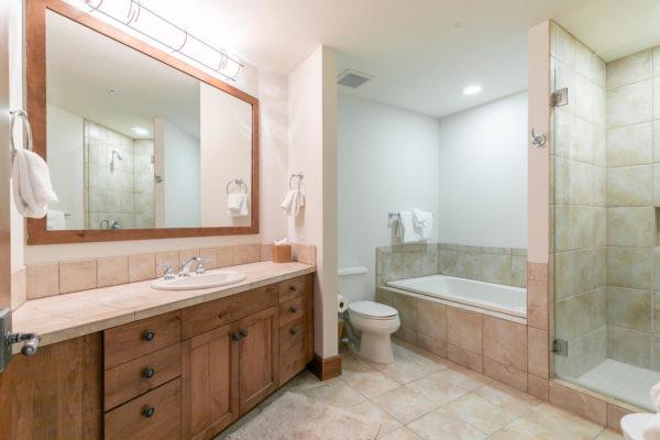 4001 Northstar Dr Unit 309-large-025-008-Bathroom Three-1500x1000-72dpi